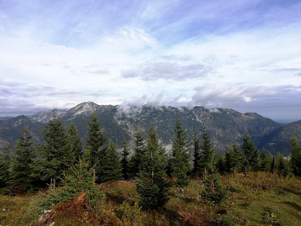 Aussicht auf dem Weg zum Petersgupf – Region Traunsee-Almtal