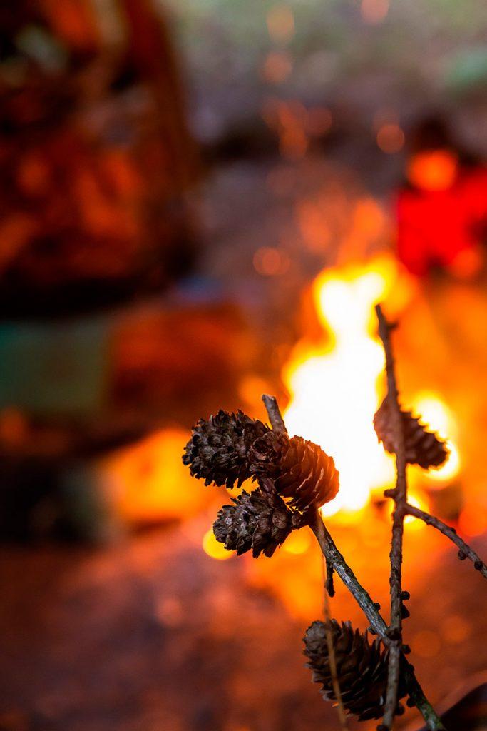 Zapfen vor dem Lagerfeuer
