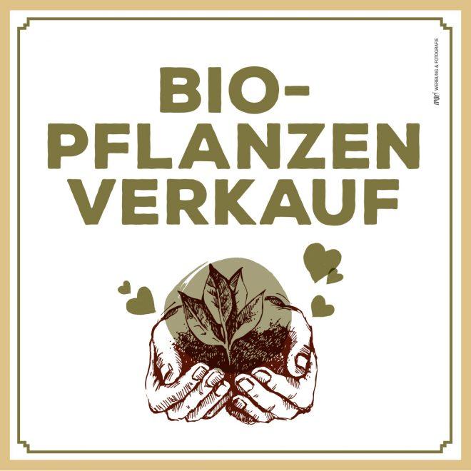 Text Biopflanzenverkauf - darunter Bild einer wertvollen Pflanze in den Händen gehalten