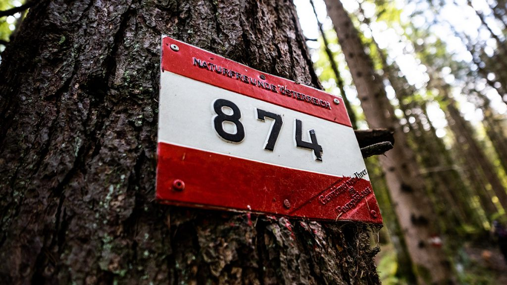 Schild Weg Nummer 874