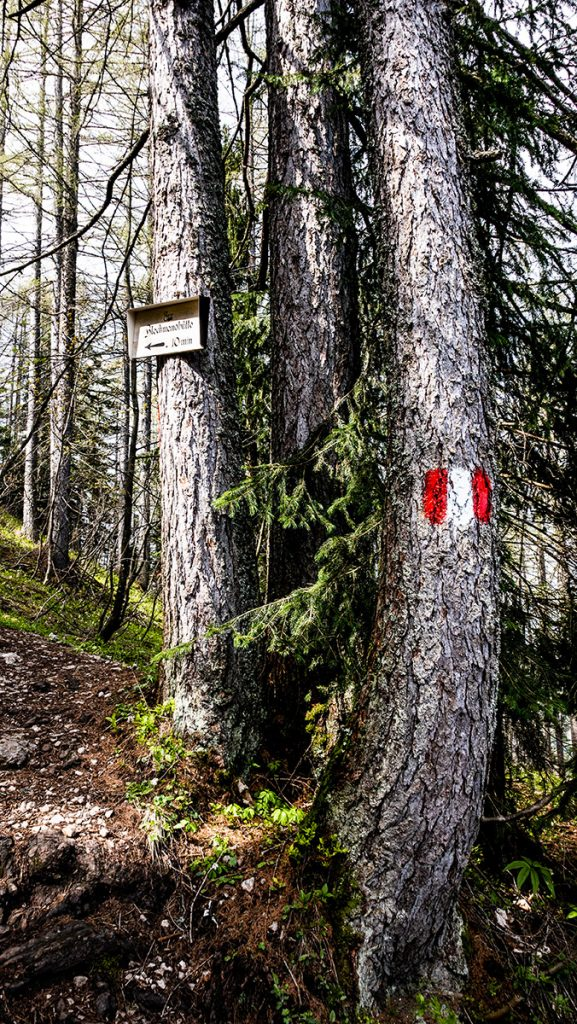Markierung und Schild auf Bäumen