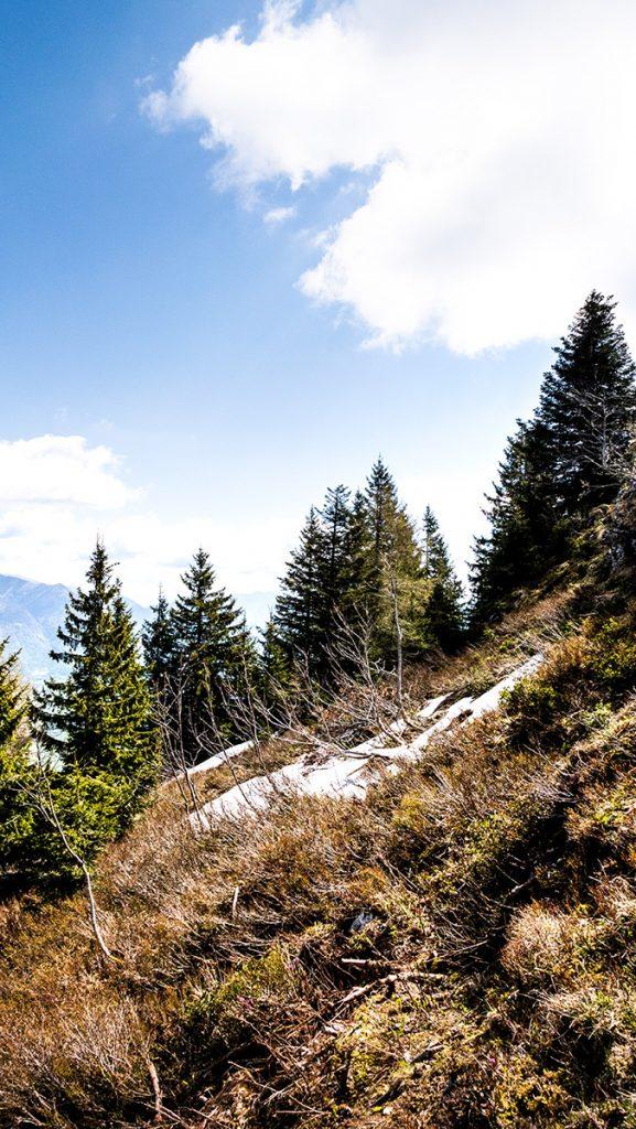 die letzten Schneereste im Mai (schon fast am Gipfel)