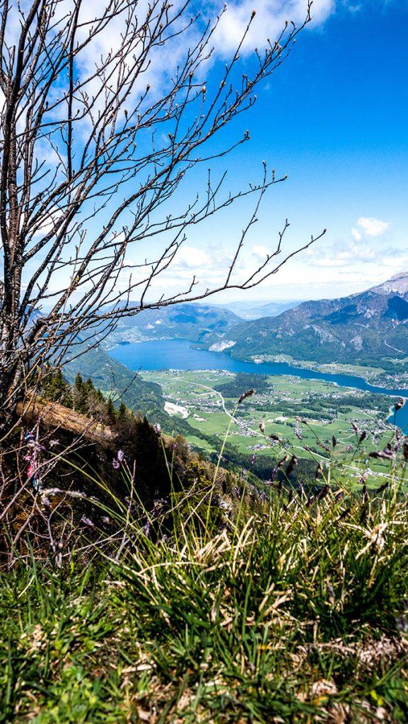 Aussicht vom Gipfel der Bleckwand auf 1.516 m auf den Wolfgangsee
