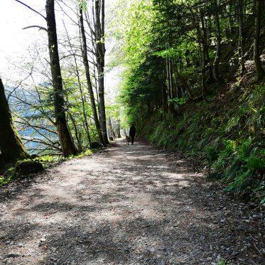 mOnA spaziert mit ihrem Hund in der Natur