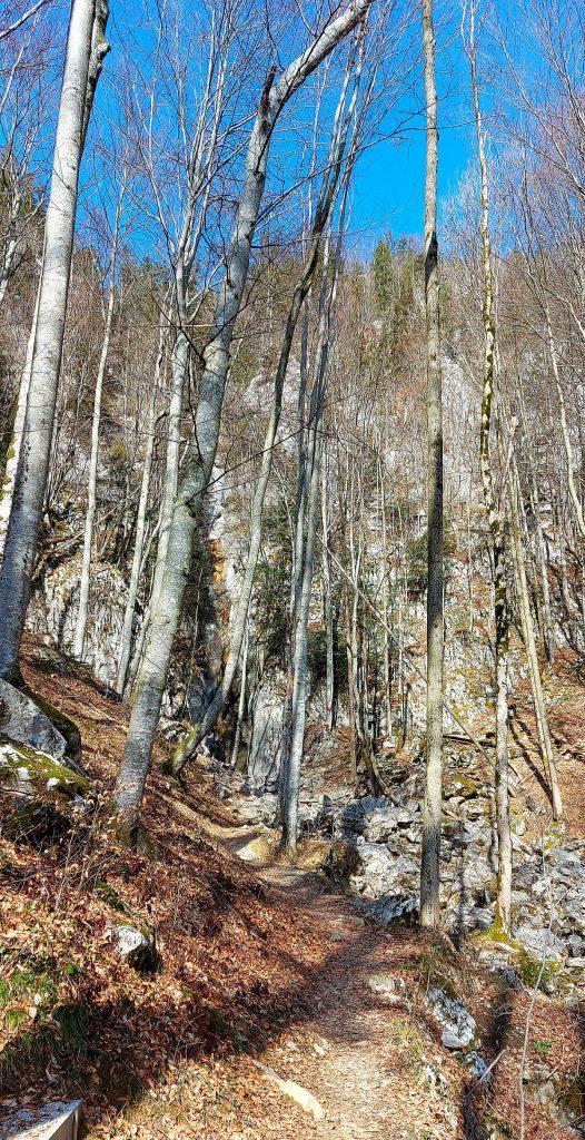 Weg zum Hohenzoller Wasserfall